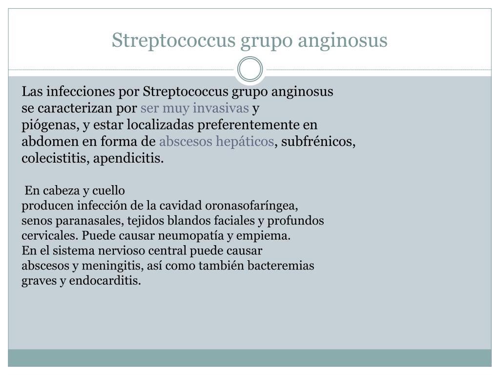 Streptococcus grupo anginosus