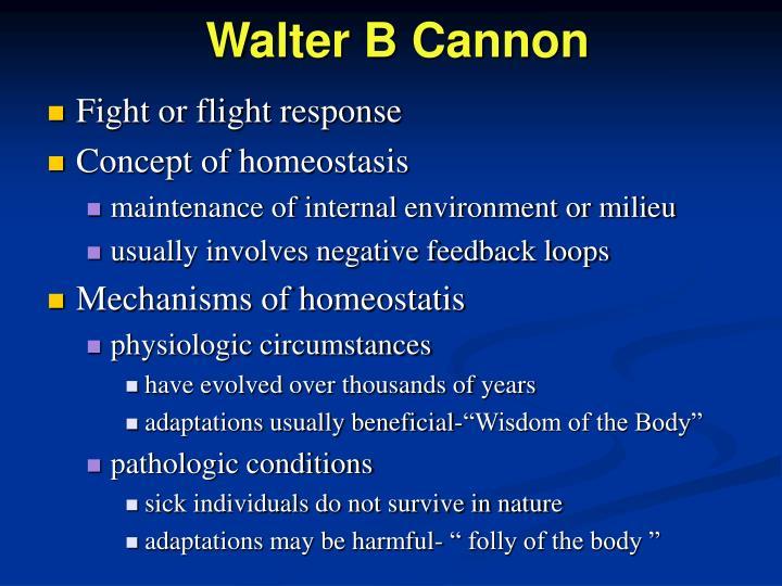 Walter B Cannon