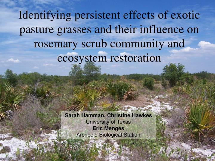 Identifying persistent effects of exotic pasture grasses and their influence on rosemary scrub commu...