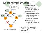bgp and network dynamics
