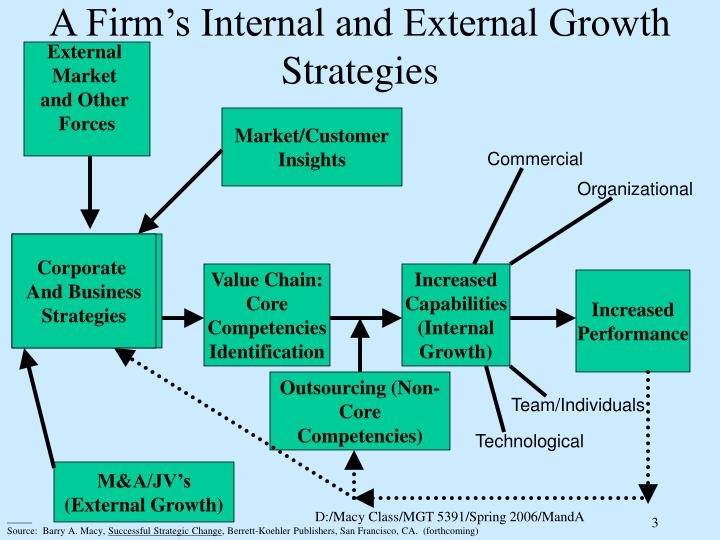A firm s internal and external growth strategies