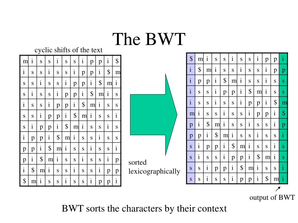 The BWT