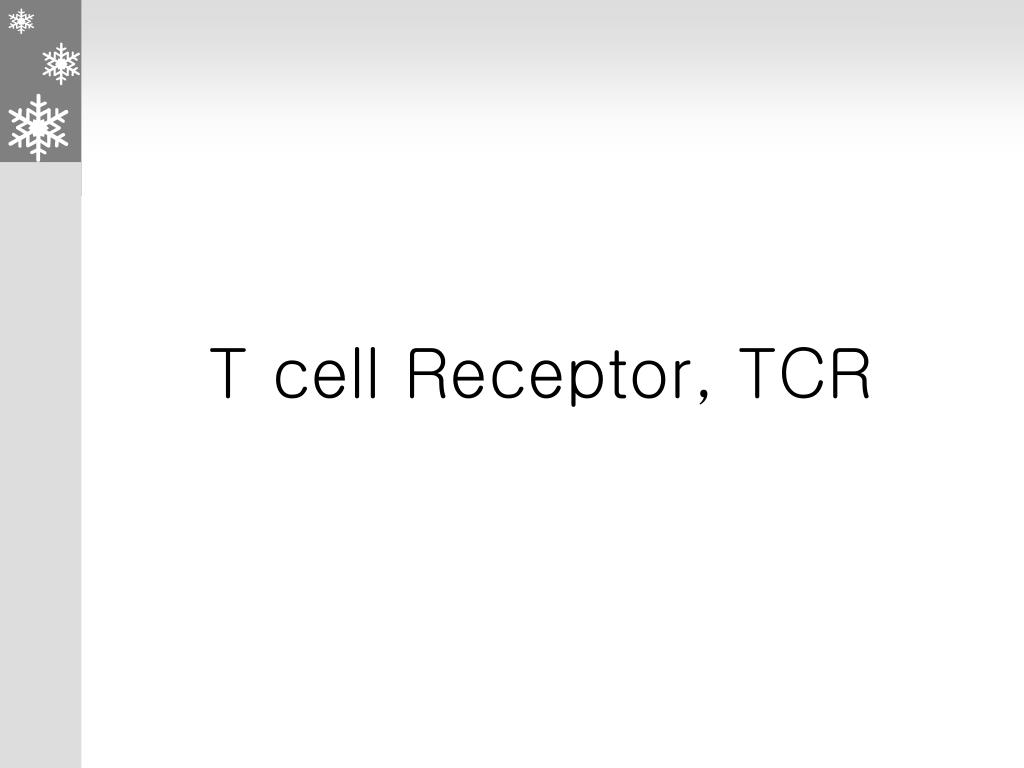 T cell Receptor, TCR