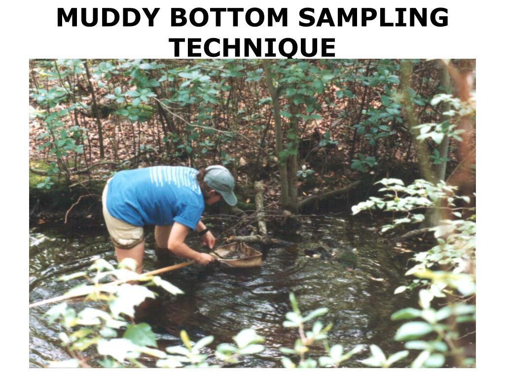 MUDDY BOTTOM SAMPLING TECHNIQUE