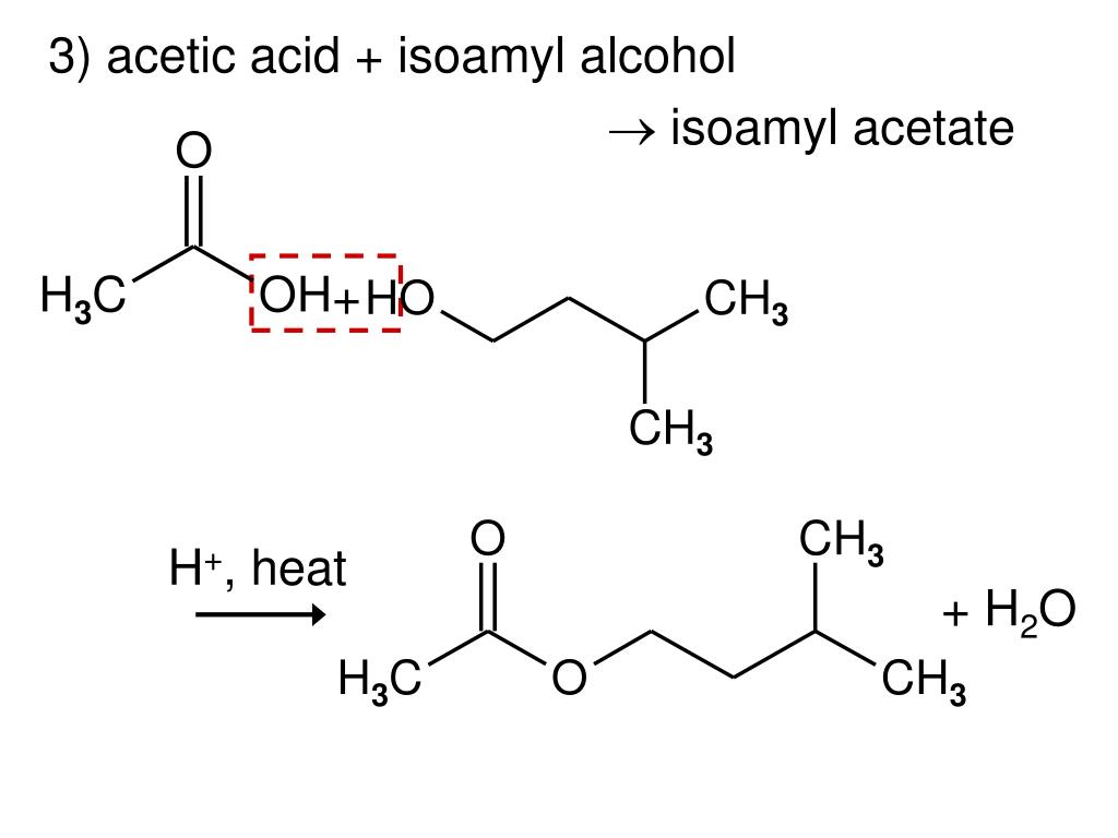 preparation of isopentyl acetate I have some homework questions after synthesizing isoamyl acetate 1)the first question is assuming that the reaction had gone to completion after the 20 minutes of refluxing, what.