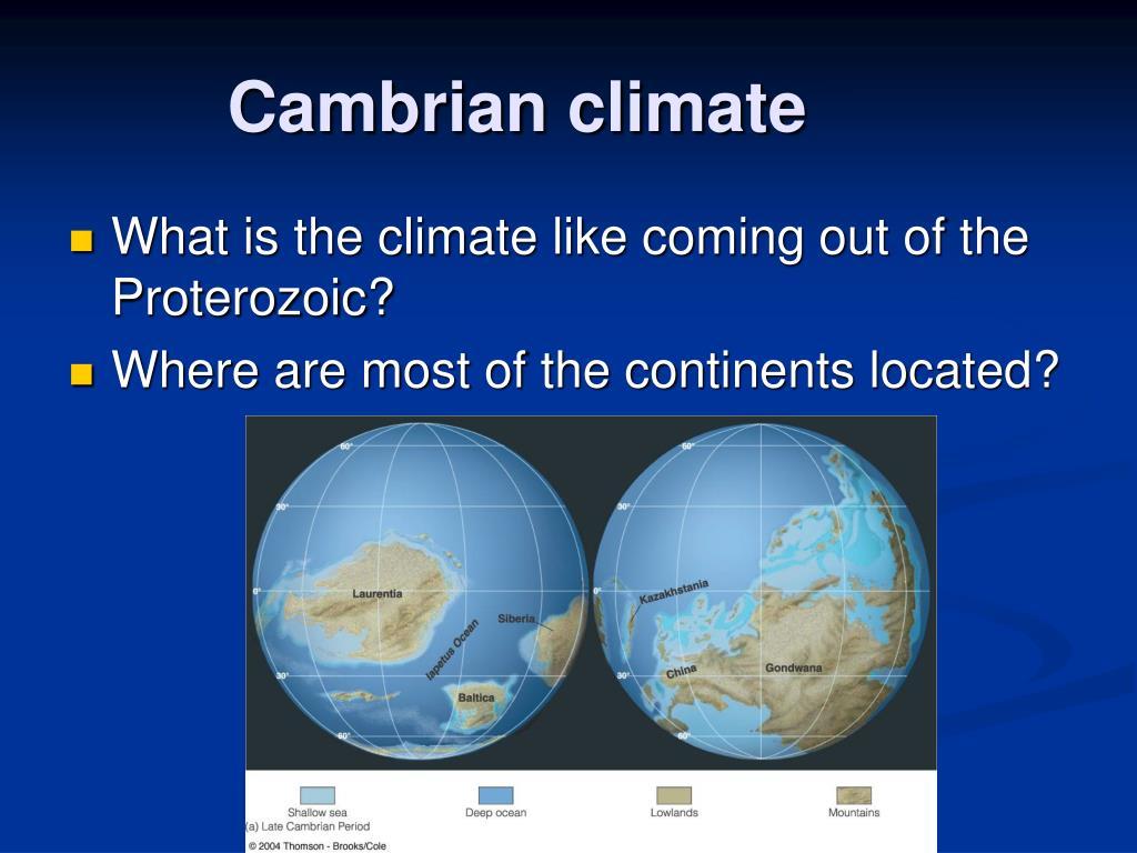 Cambrian climate