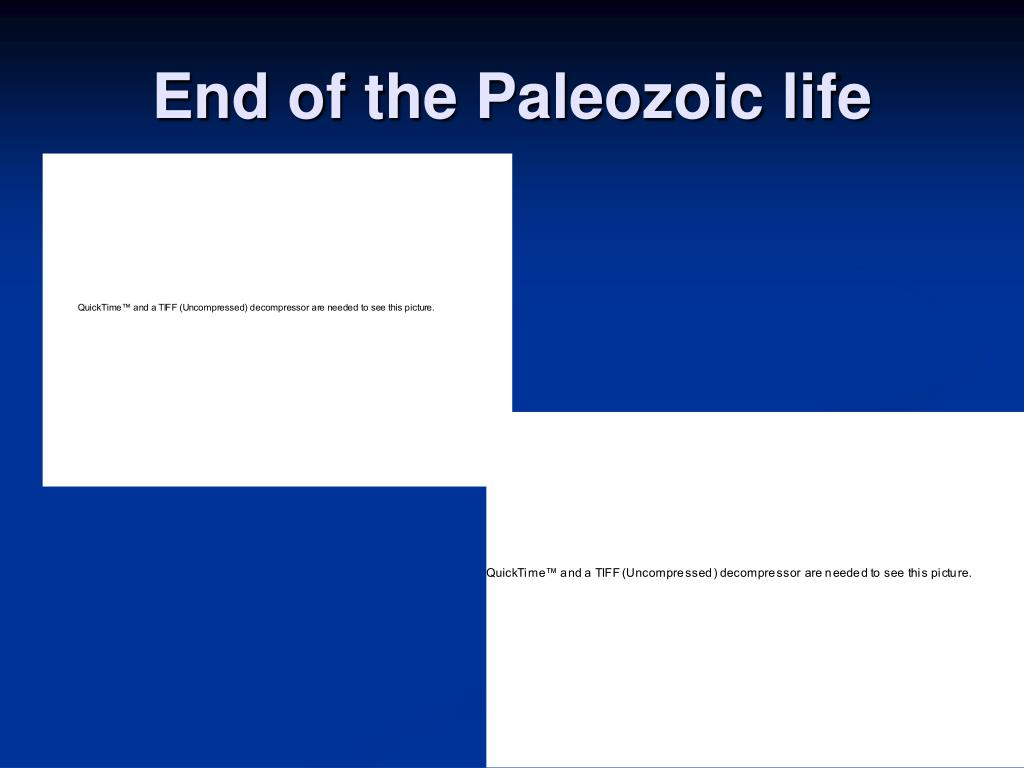 End of the Paleozoic life