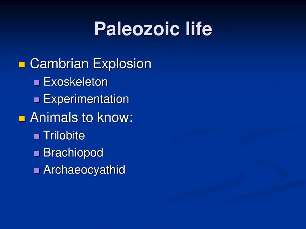 Paleozoic life