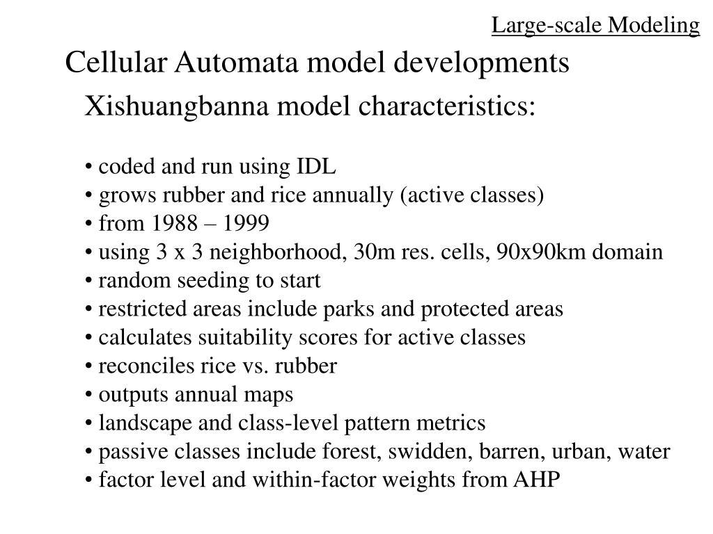 Large-scale Modeling