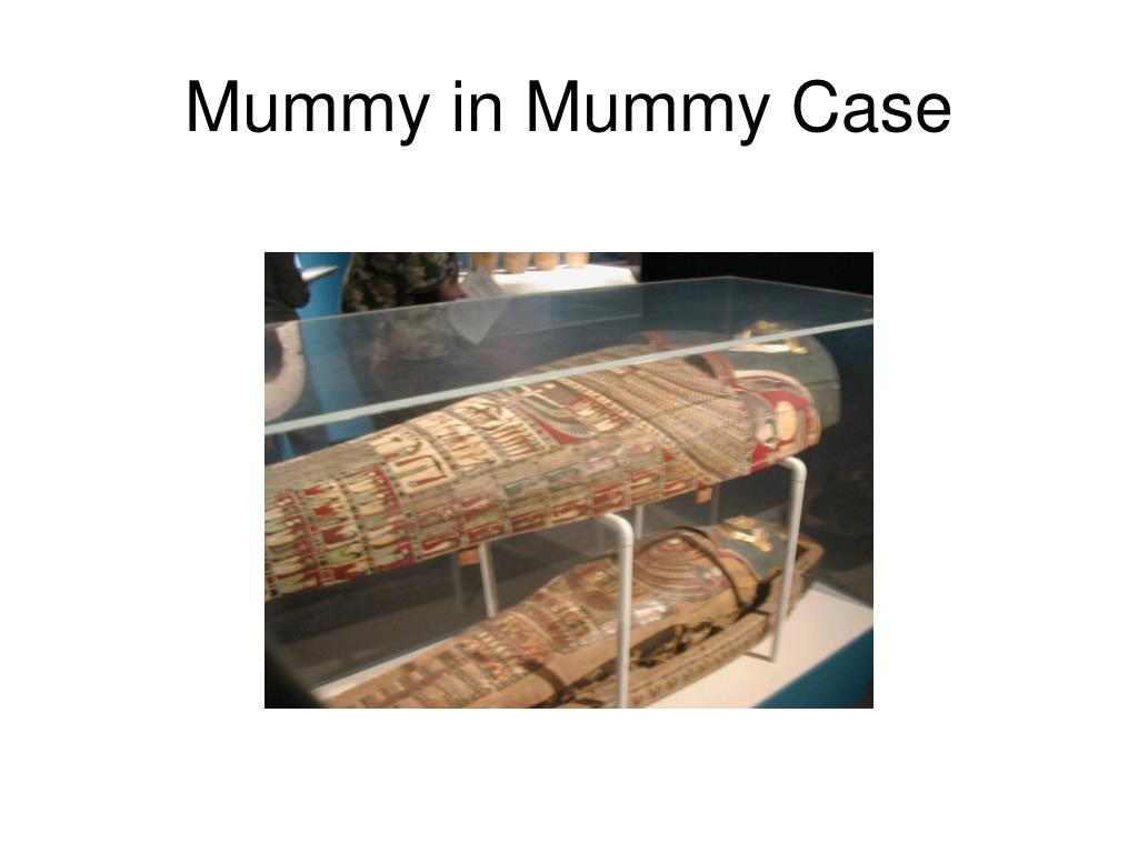Mummy in Mummy Case