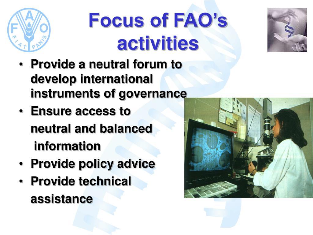 Focus of FAO's activities
