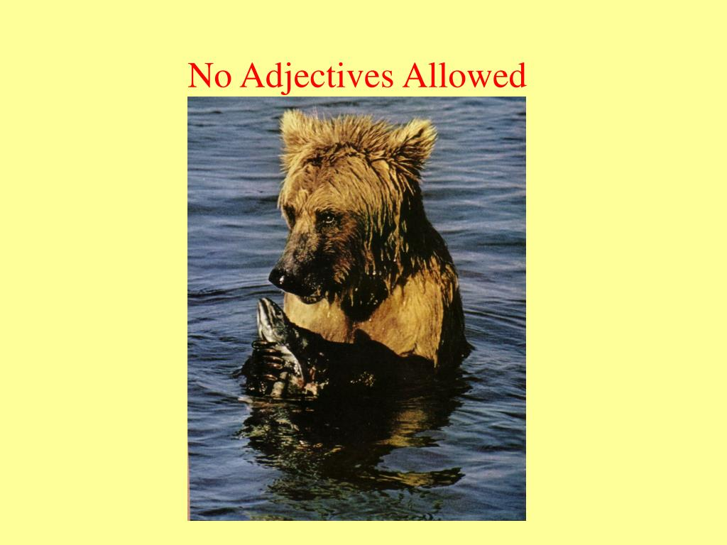 No Adjectives Allowed
