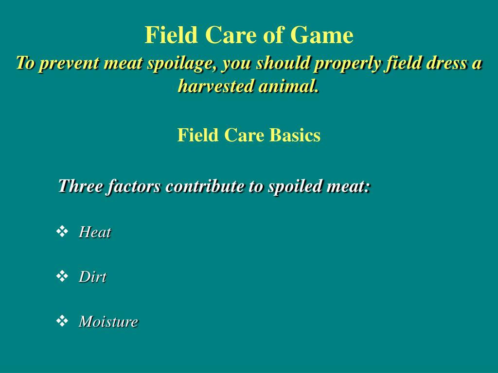 Field Care of Game