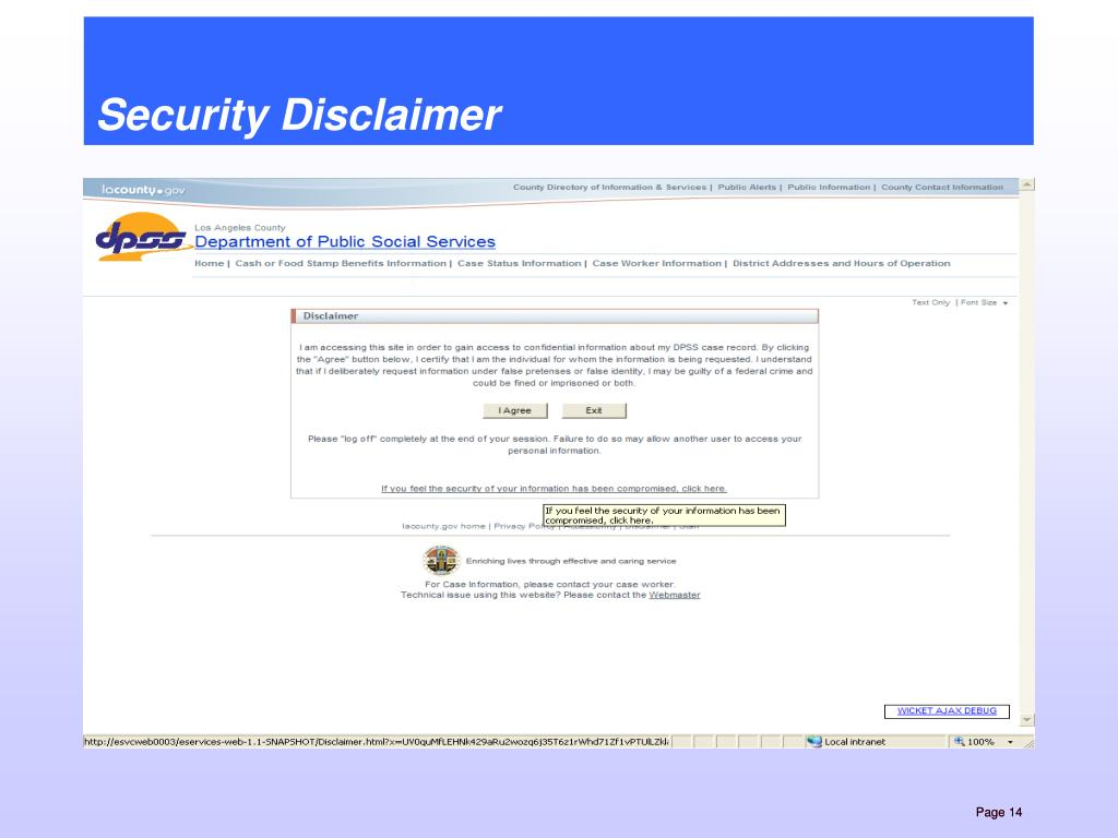 Security Disclaimer