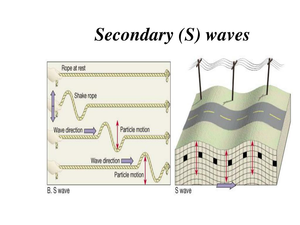 Secondary (S) waves