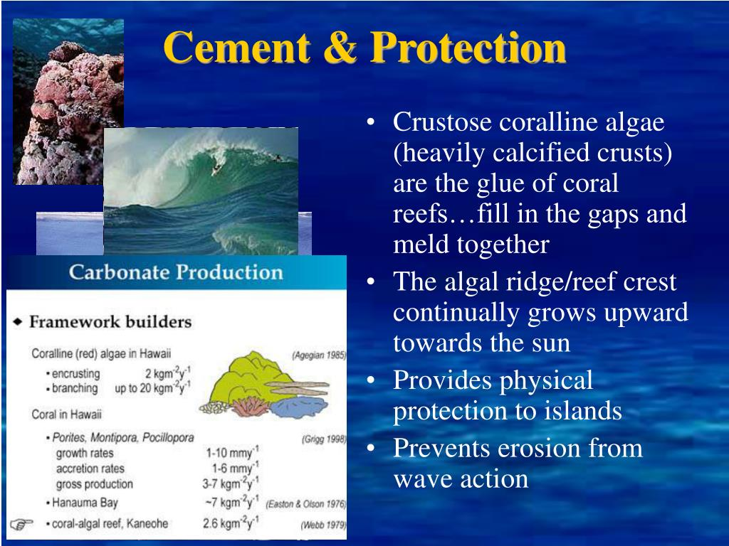 Cement & Protection