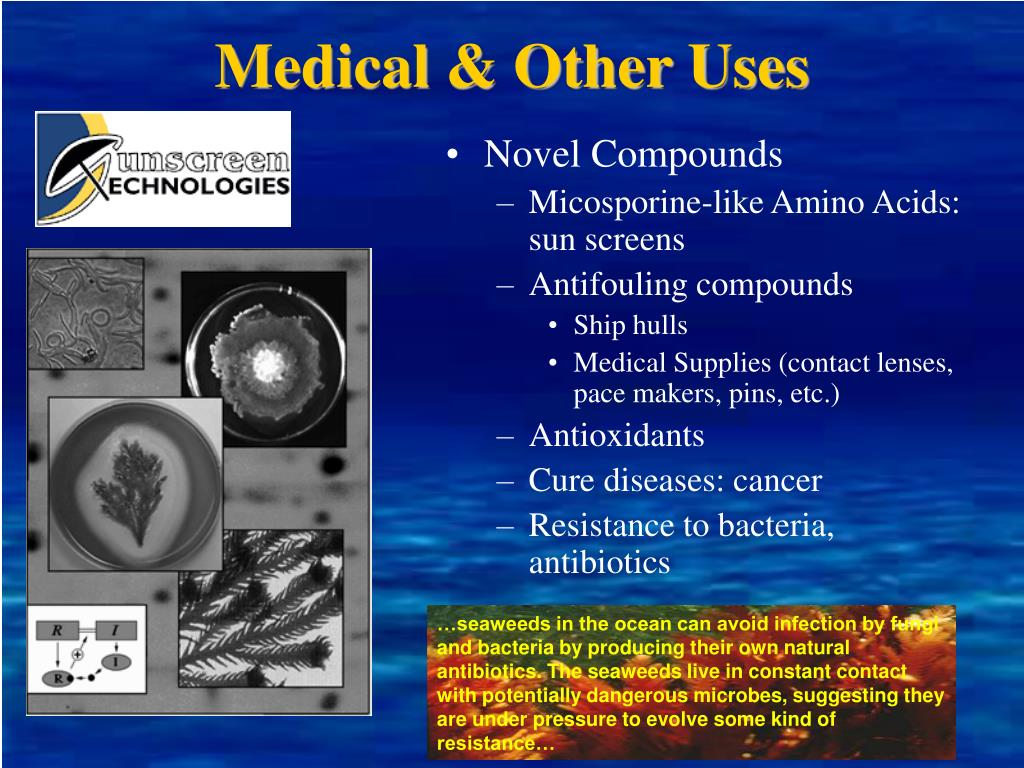 Medical & Other Uses