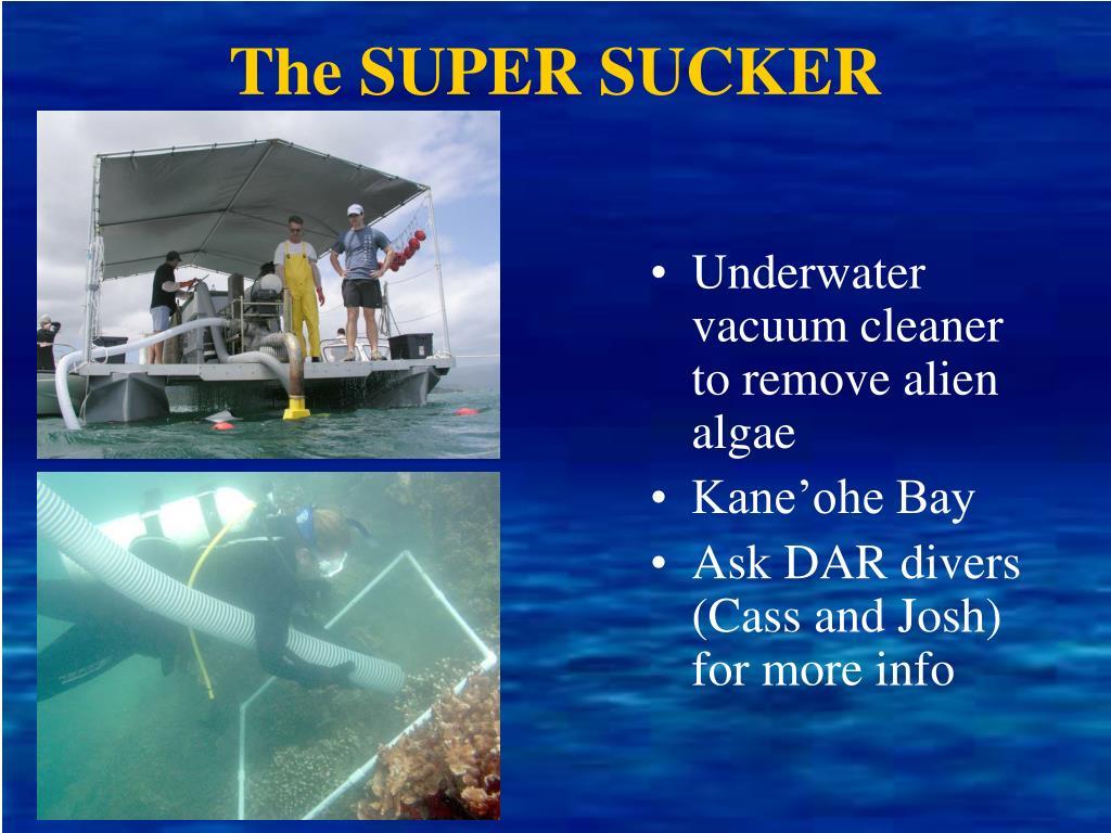 The SUPER SUCKER