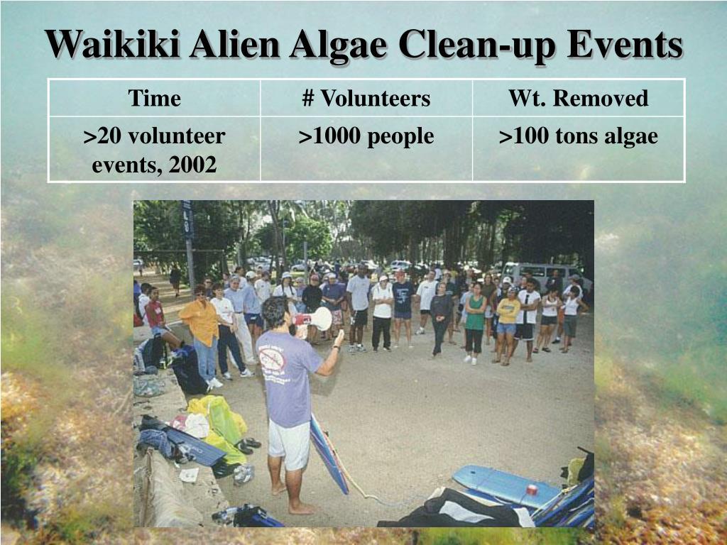 Waikiki Alien Algae Clean-up Events