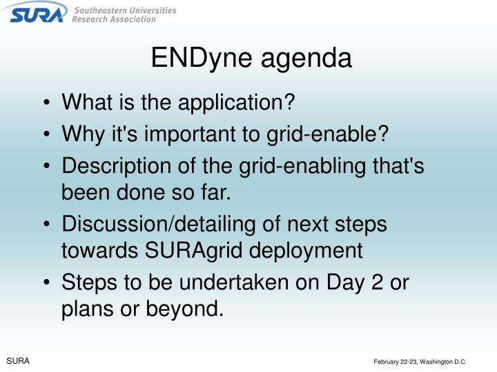 ENDyne agenda