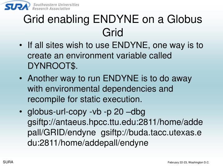 Grid enabling ENDYNE on a Globus Grid