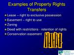 examples of property rights transfers