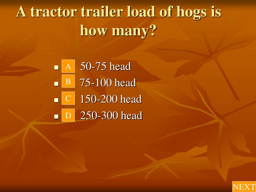 A tractor trailer load of hogs is how many?