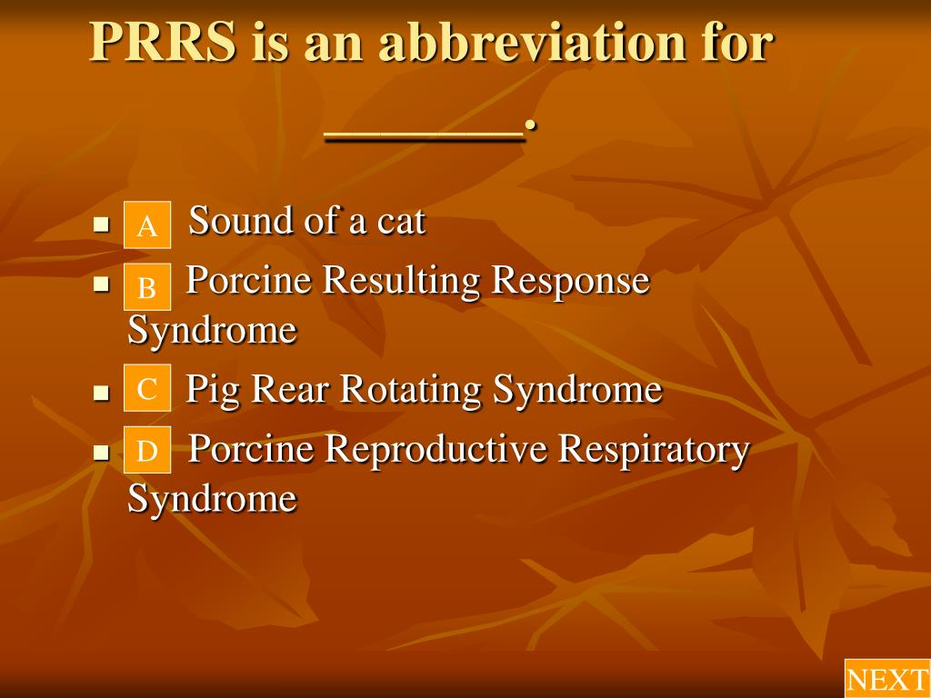 PRRS is an abbreviation for _______.