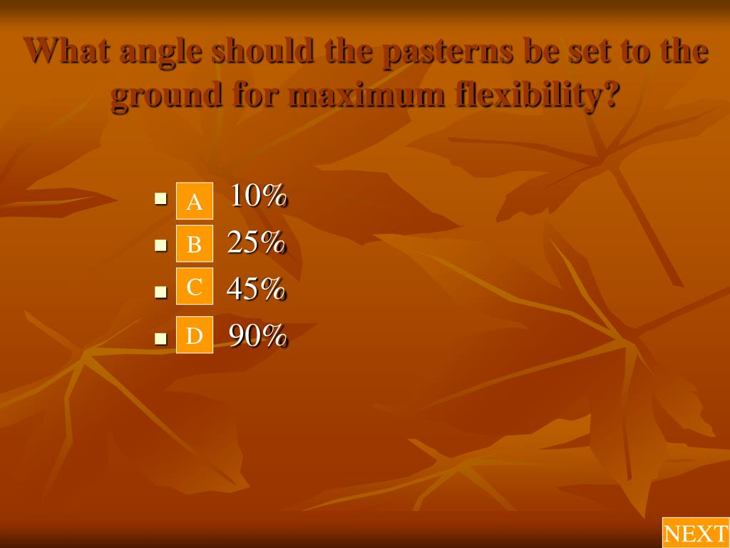 What angle should the pasterns be set to the ground for maximum flexibility?
