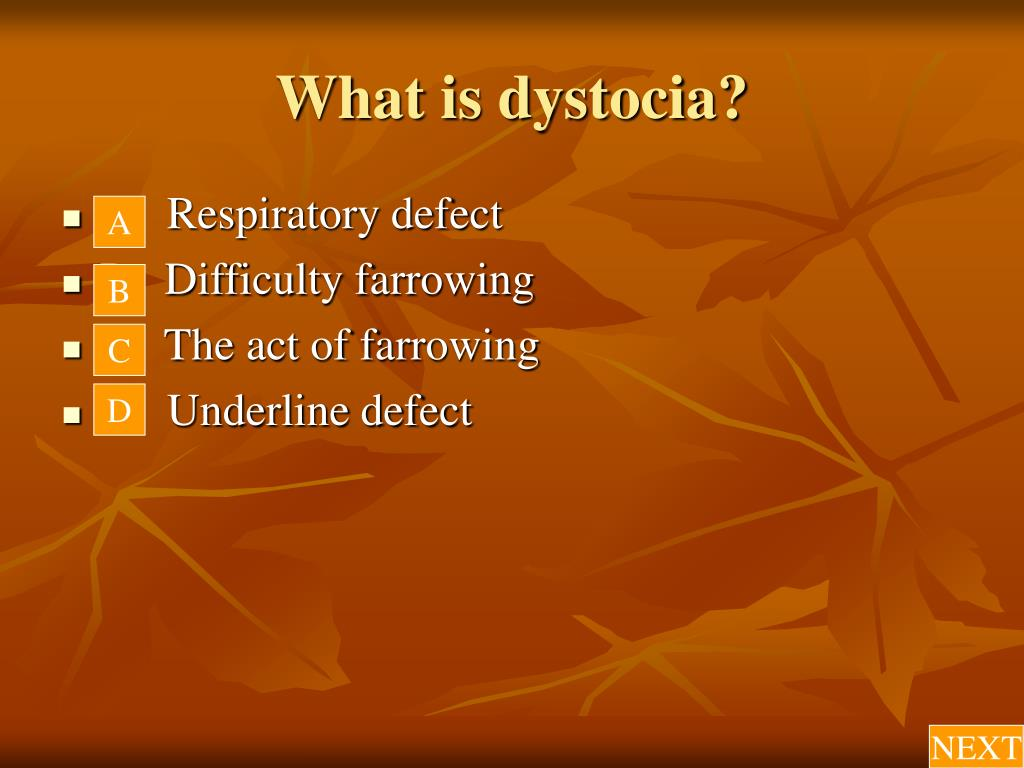 What is dystocia?