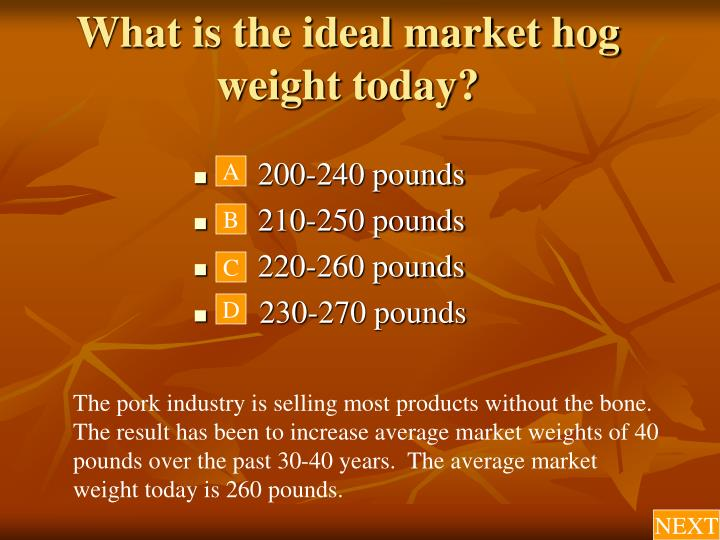 What is the ideal market hog weight today