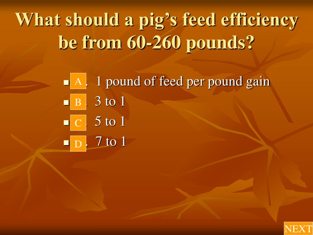 What should a pig's feed efficiency be from 60-260 pounds?