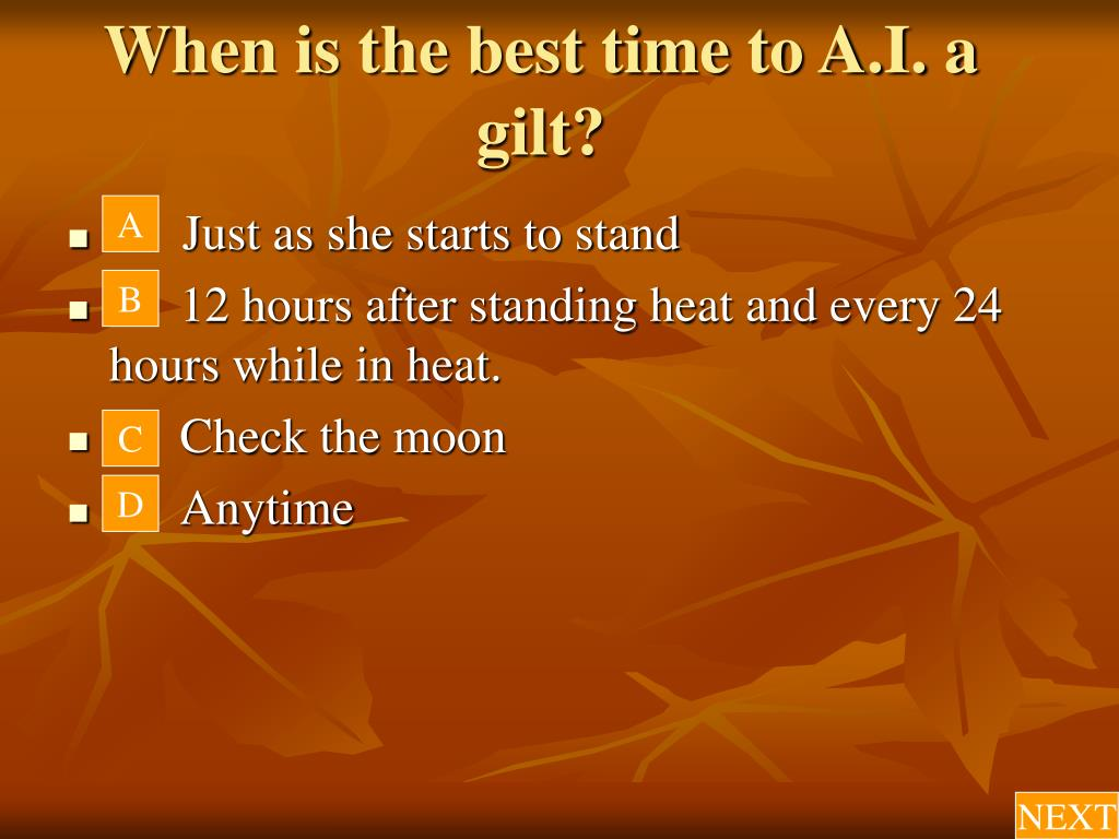 When is the best time to A.I. a gilt?