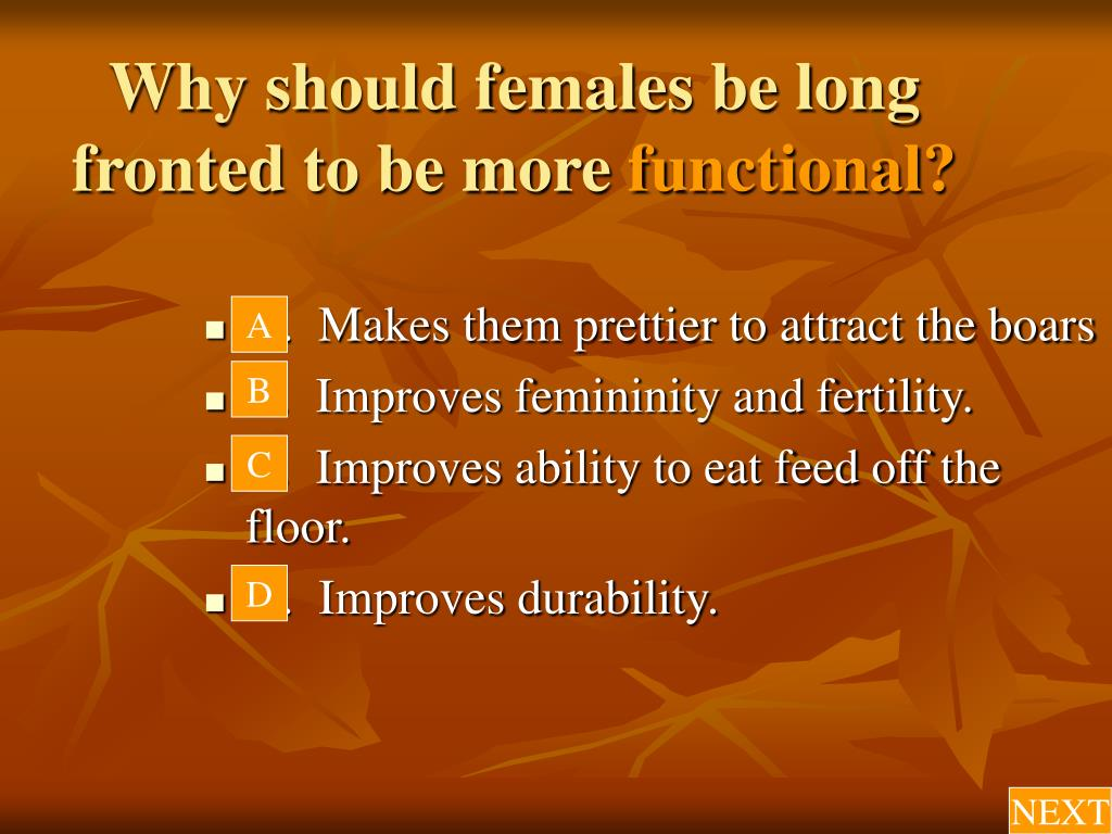 Why should females be long fronted to be more