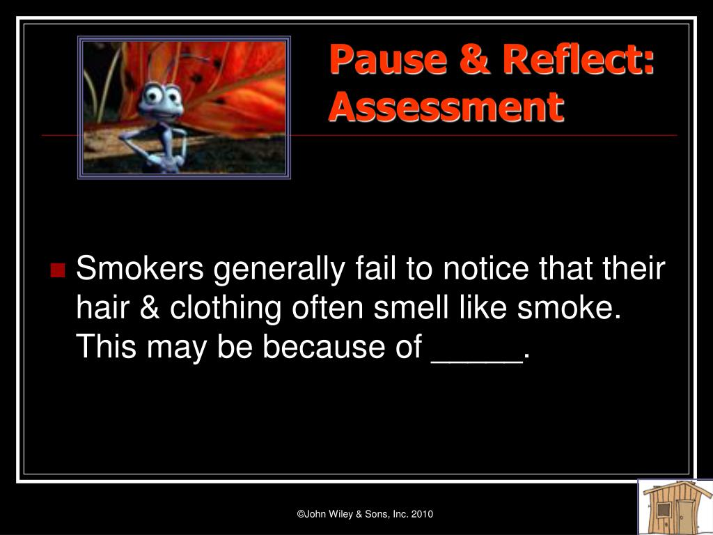 Pause & Reflect:                        Assessment