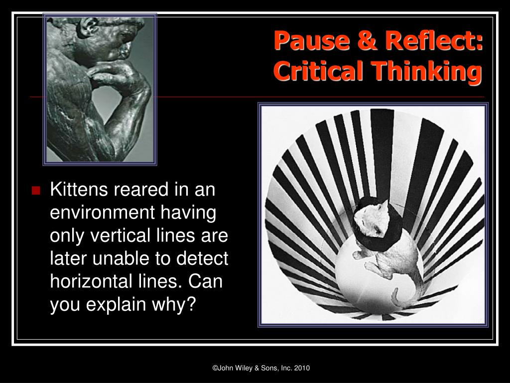 Kittens reared in an environment having only vertical lines are later unable to detect horizontal lines. Can you explain why?