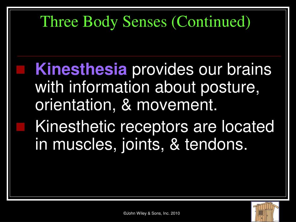 Three Body Senses (Continued)