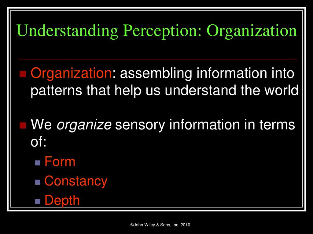 Understanding Perception: Organization