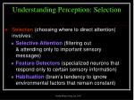 understanding perception selection