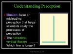 understanding perception