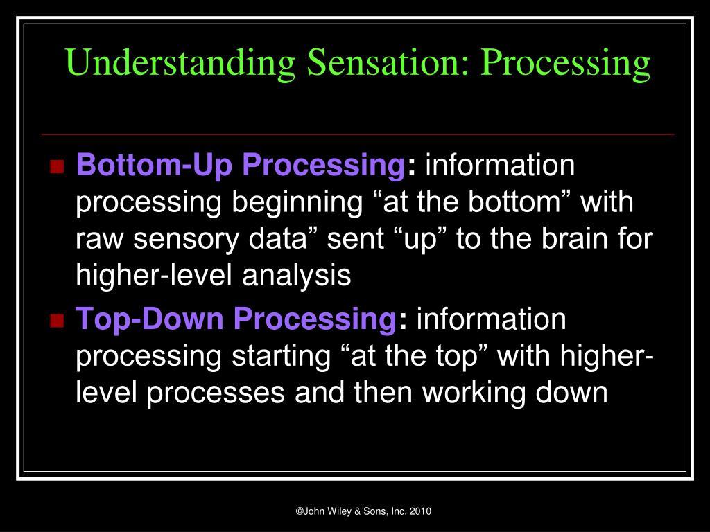 Understanding Sensation: Processing