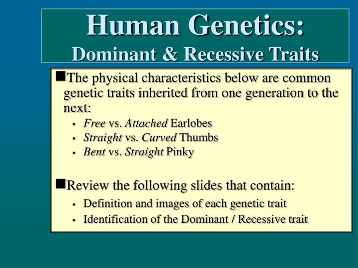 PPT - Human Genetics: Dominant & Recessive Traits ...