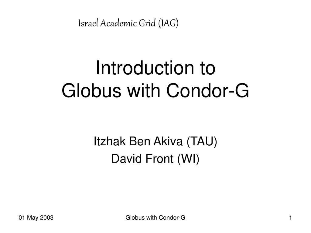 Israel Academic Grid (IAG)