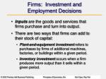 firms investment and employment decisions