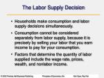 the labor supply decision