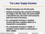 the labor supply decision3
