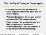 the life cycle theory of consumption1