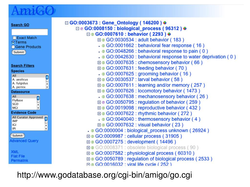 http://www.godatabase.org/cgi-bin/amigo/go.cgi