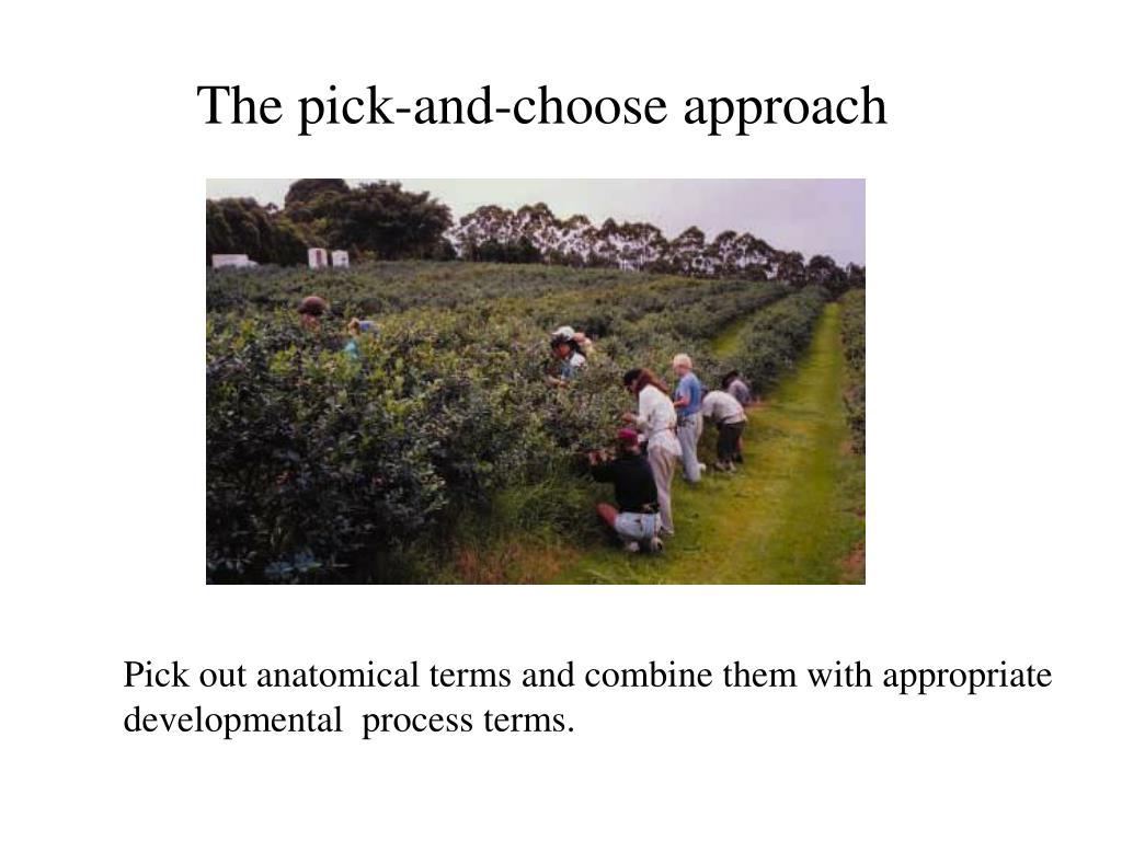 The pick-and-choose approach