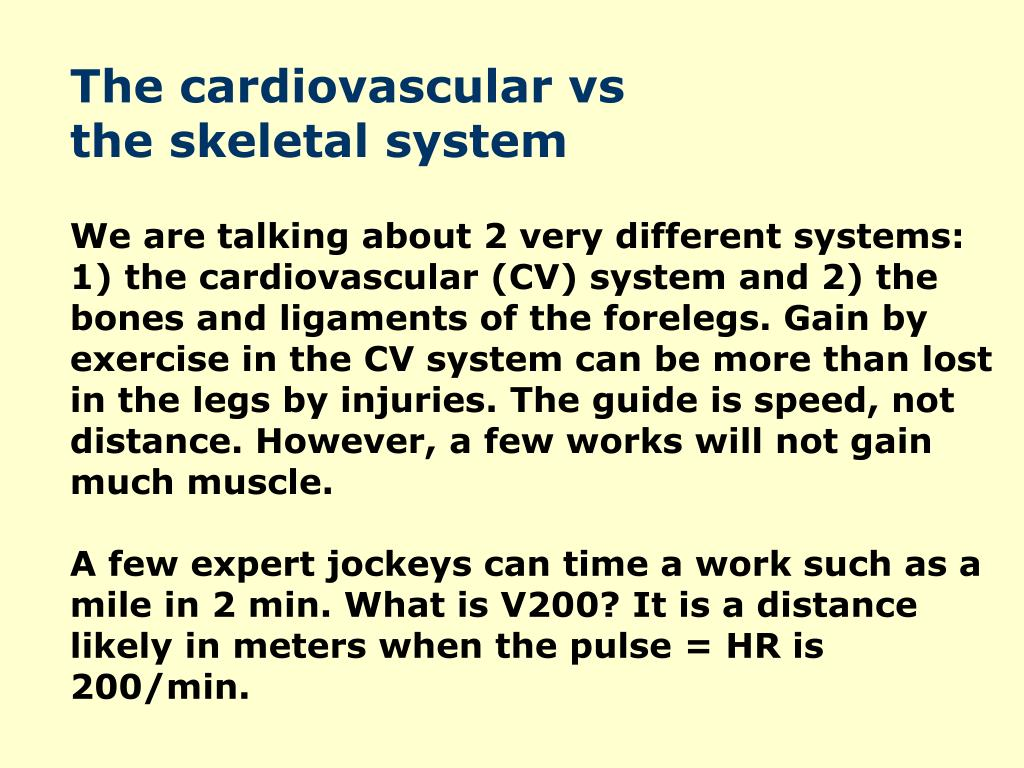 The cardiovascular vs                             the skeletal system